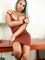 shemale transexual tranny